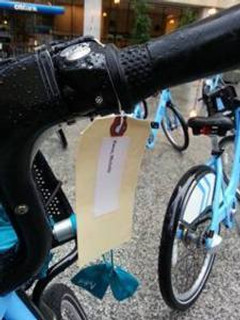 personalized Divvy bike