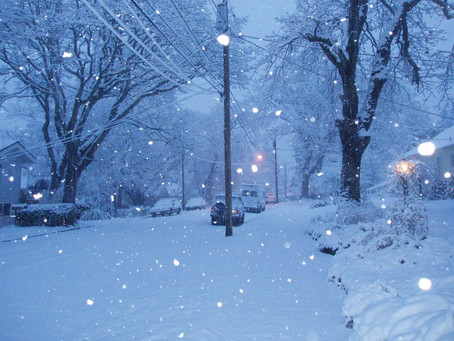 Winter Quarter Begins