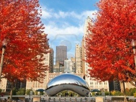 4 Ways to Make the Most of Chicago this Fall