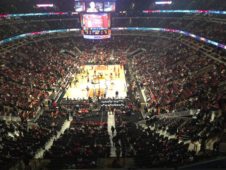 Cheering for the Bulls