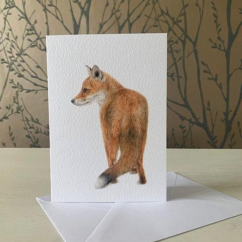 Vixen A6 Greeting Card