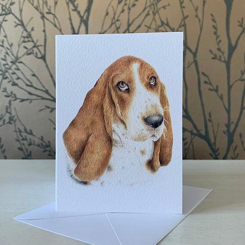 Basset Hound A6 Greeting Card