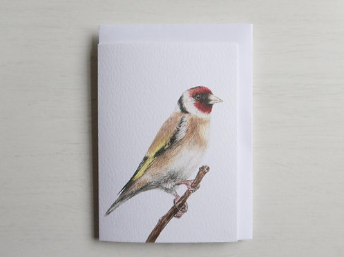 Goldfinch A6 Card