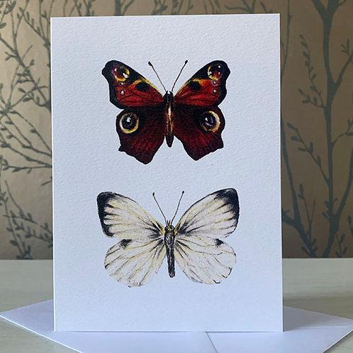 "British Butterflies 5"" X 7"" Greeting Card"