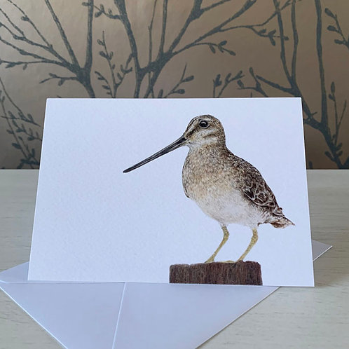 Snipe A6 Greeting Card