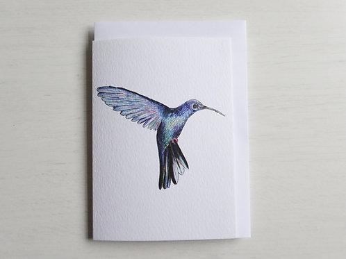 Hummingbird A6 Card
