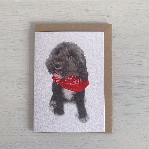 Cockapoo A6 Greeting Card