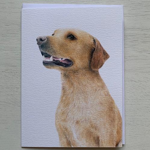 Faithful Companion Greeting Card