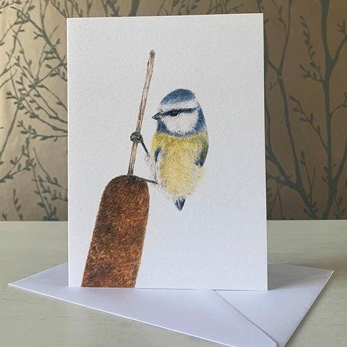 """Blue Tit 5"""" X 7"""" Greeting Card"""