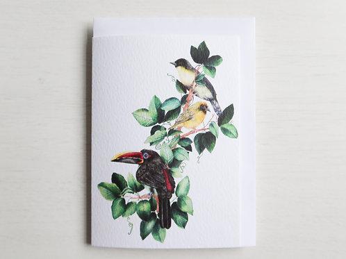 Tropical Birds A6 Card