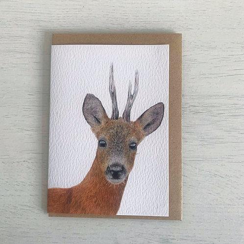 Roe Buck A6 Greeting Card