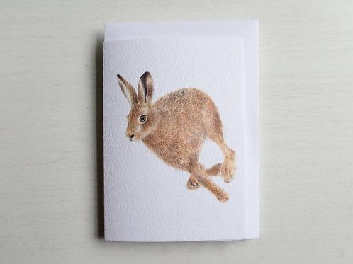Running Hare A6 Card