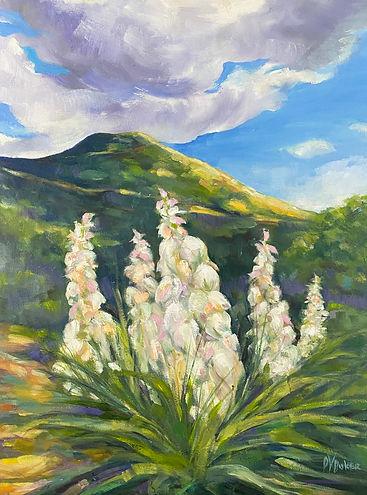 High Plains Yucca