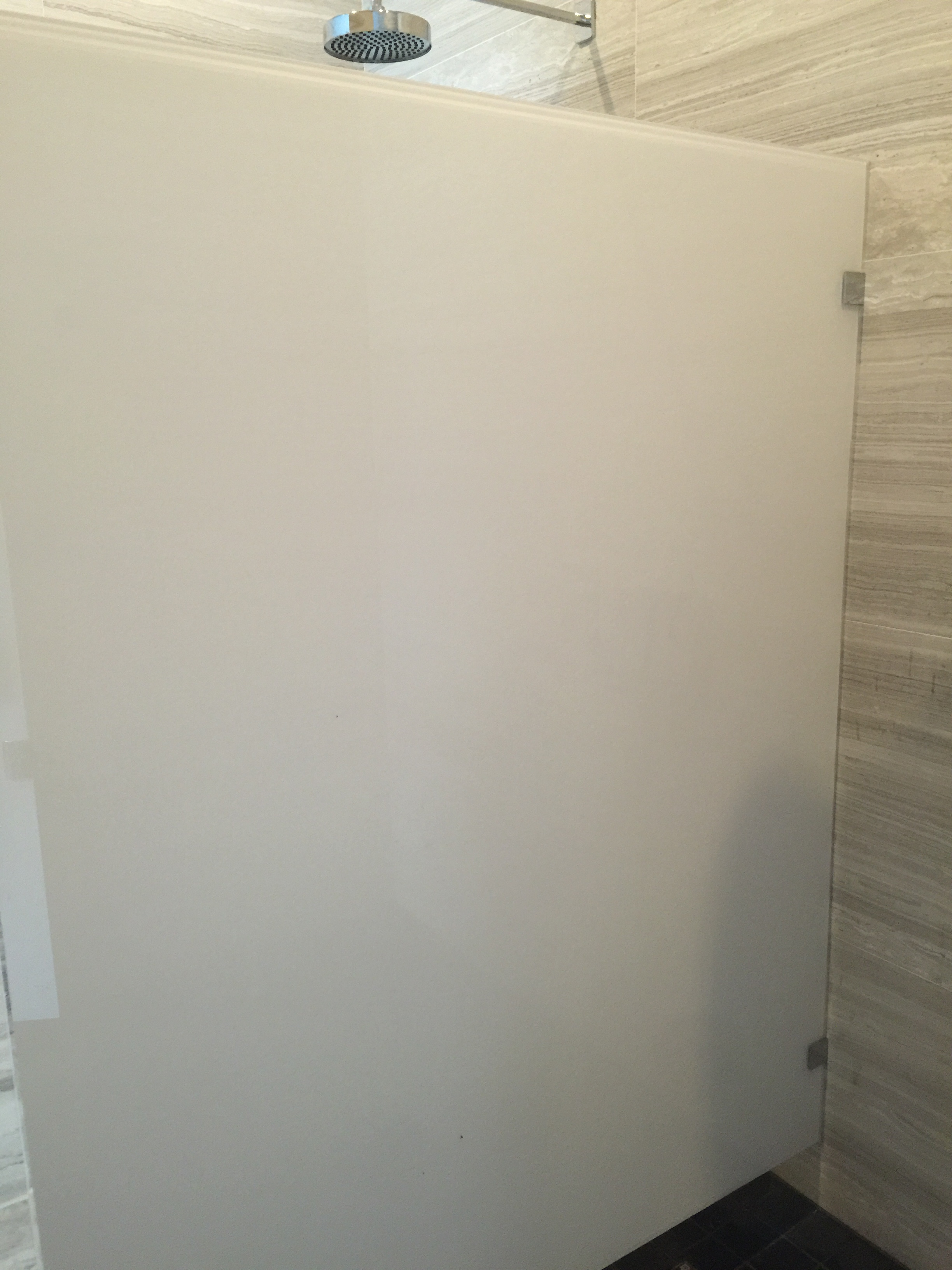 LAMINATED  GLASS SHOWER FIXED PANEL.jpg