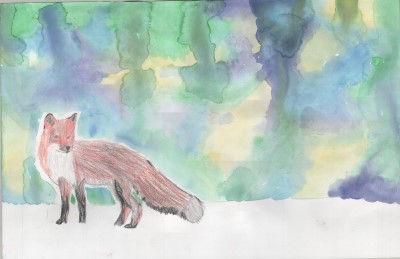 Emery Fox.jpg