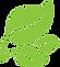 217-2179368_leaf-leaf-for-logo-png-clipa