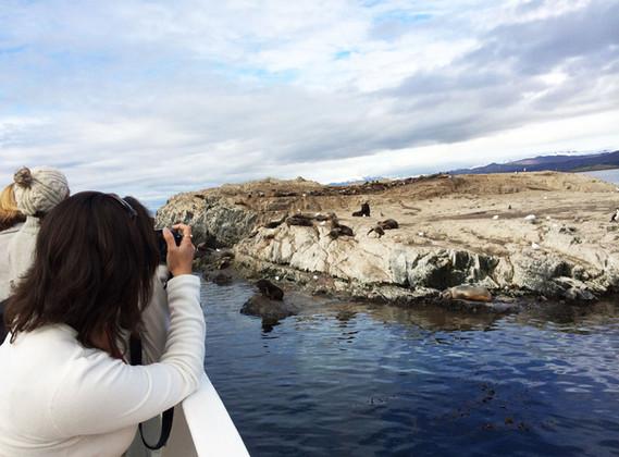 Navegação Canal de Beagle Isla Lobos