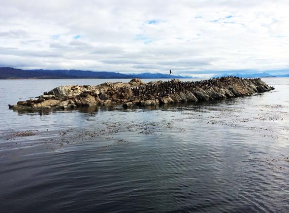 Navegacion Canal Beagle Isla Lobos