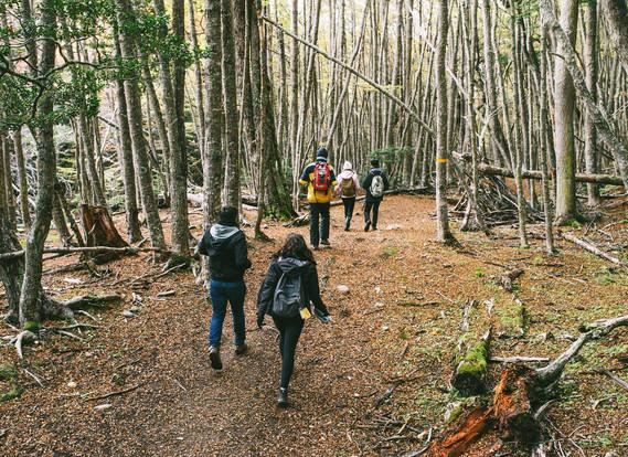 Parque Nacional con Trekking
