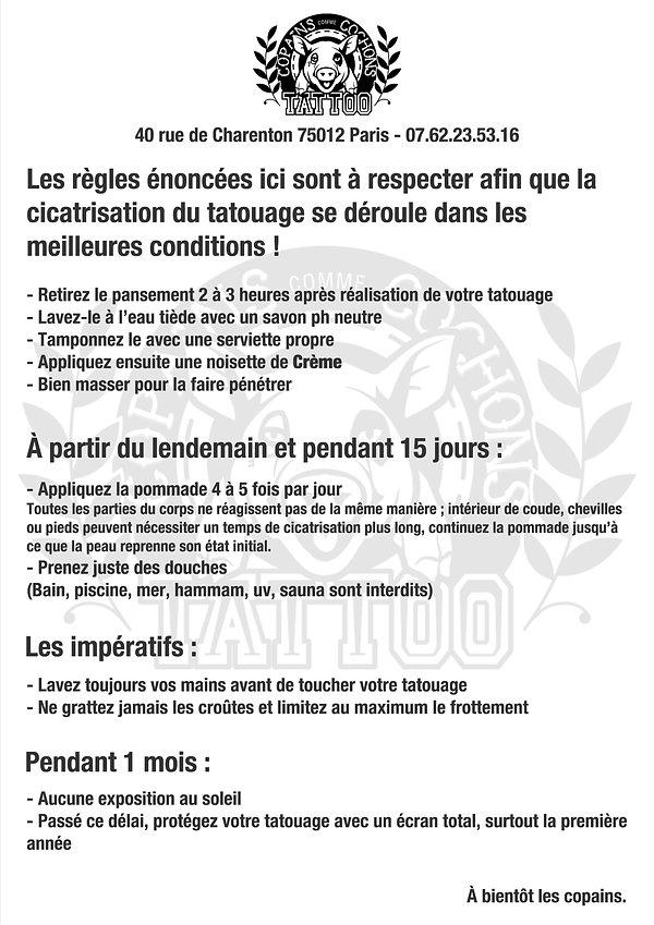 feuilleDeSoinsA4.jpg
