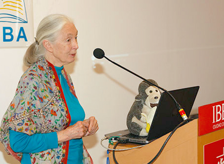 Dr. Jane Goodall Partners with WIJABA for Environmental Education in Mexico