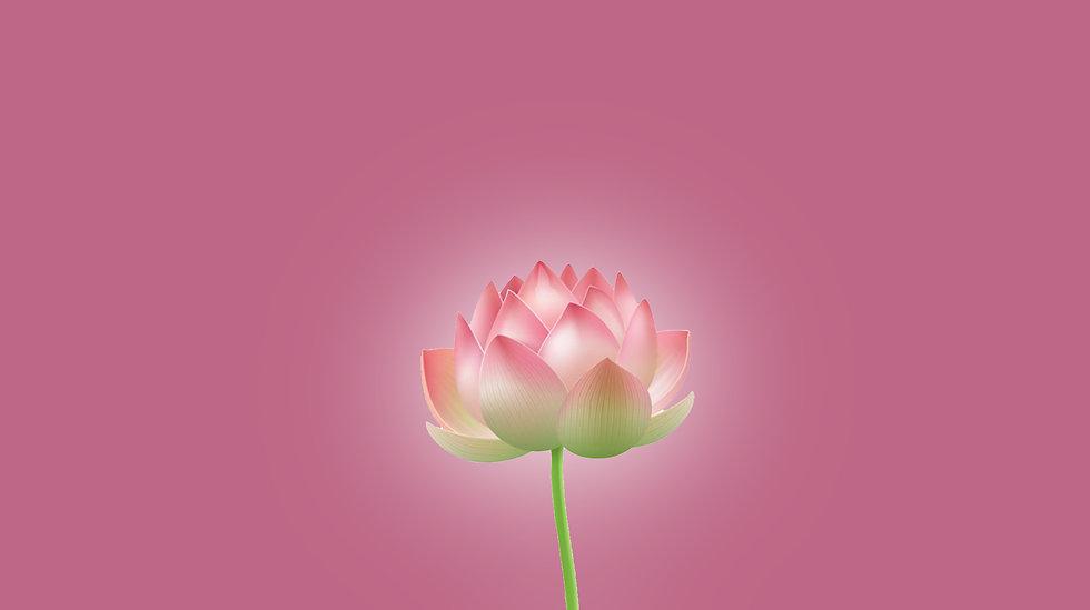 Lotus_Scroll_03.jpg