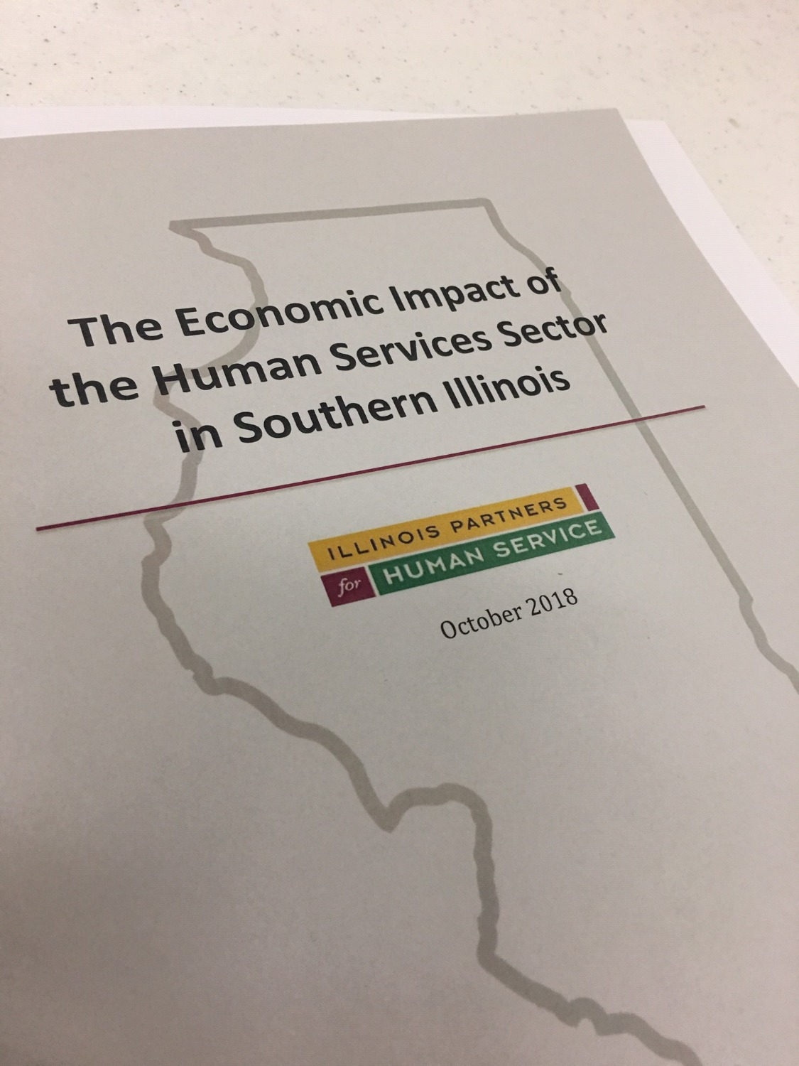 Illinois Partners report