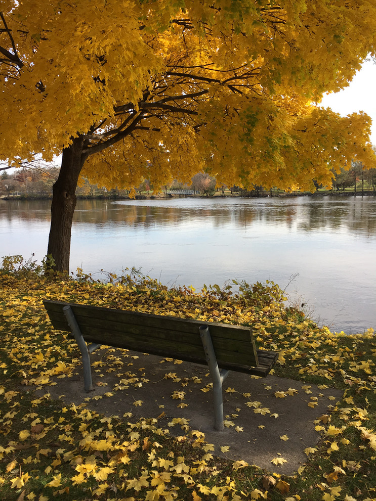 Autumn Rock River