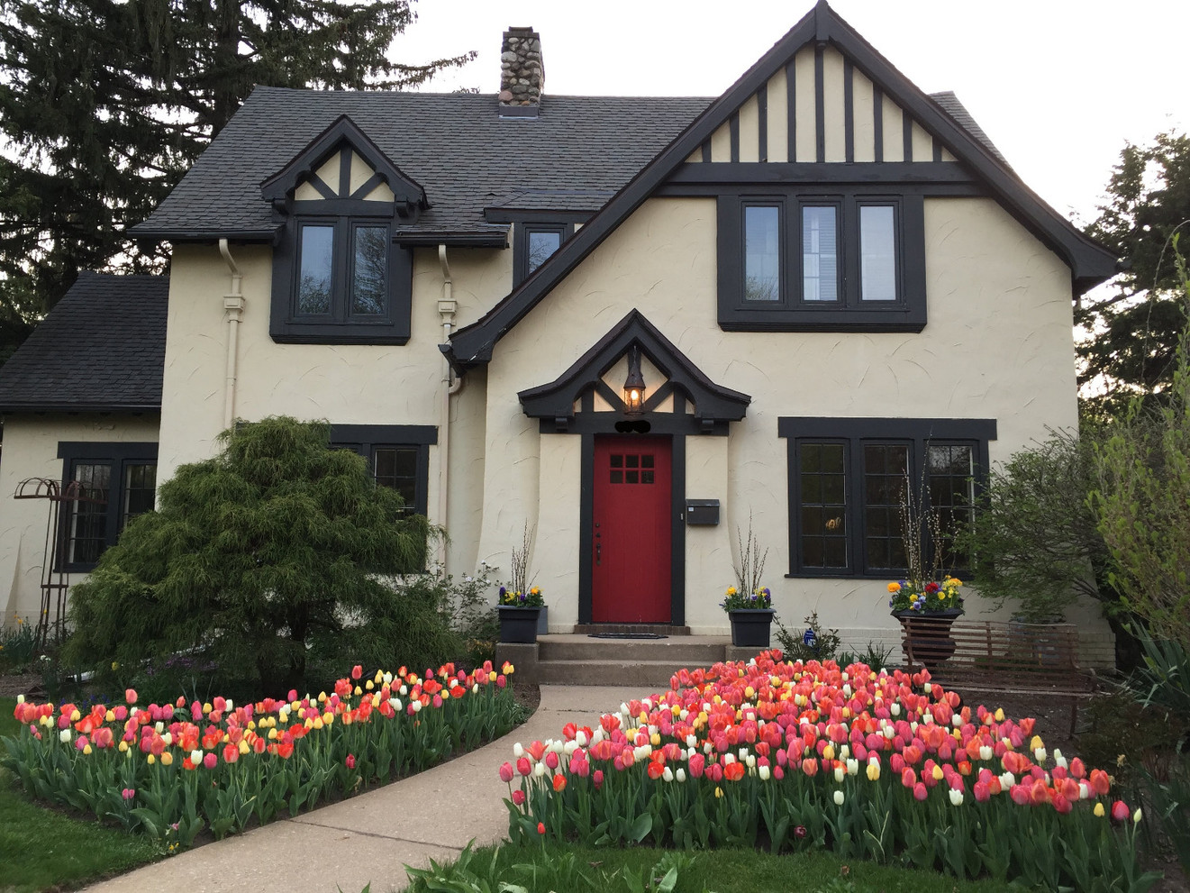 Spring Tulip Splendor at an Edgewater Home