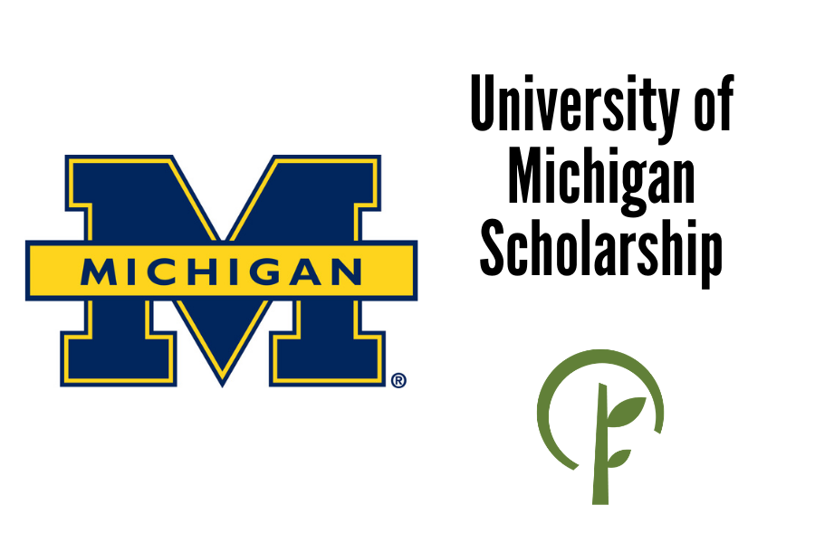 Logos for the University of Michigan and the Community Foundation of Northern Illinois.