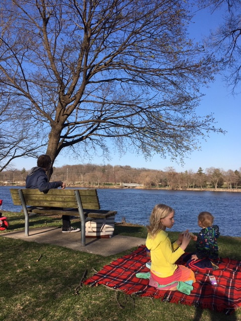 Picnic on the Rock River