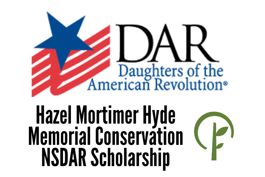 Logos for the Daughters of the American Revolution and the Community Foundation of Northern Illinois