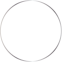 WEIGHT ICON (TRANS).png