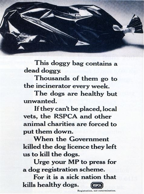 An ad for the RSPCA written by David Abbott