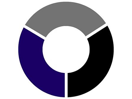 Donut Chart - Presentation (4).png