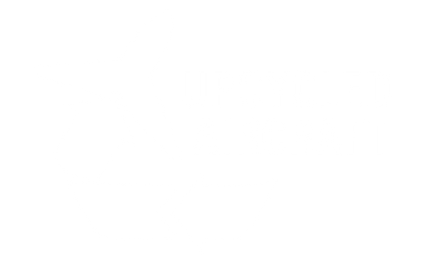 Upcycled Aircraft White 70%.png