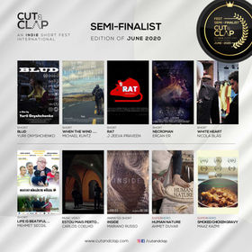 CUT&CLAP_Fest-Semi-&-Finalist-02.jpg