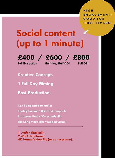Rococo Premium lyric Video Pricing Plan