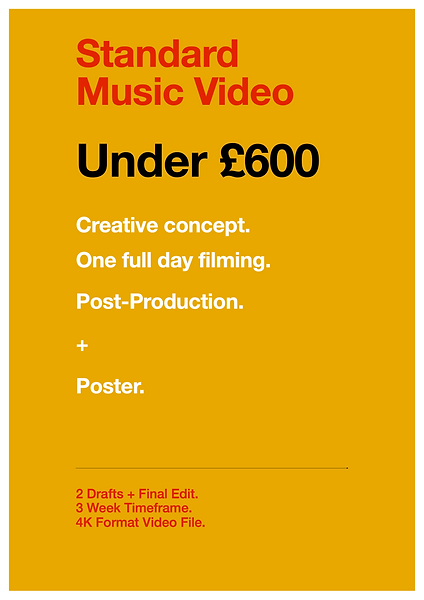 Rococo Standard Video Pricing Plan 2020