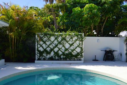 Phillips Landscape - latticework