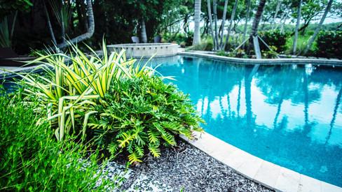 Phillips Landscape pool area