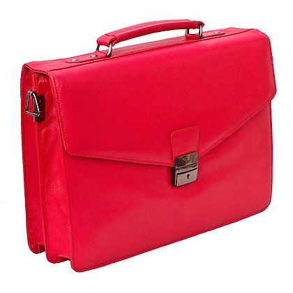 Red Large Business Case