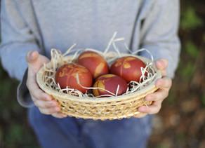 Na barvení vajíček jděte s pomocí přírody!