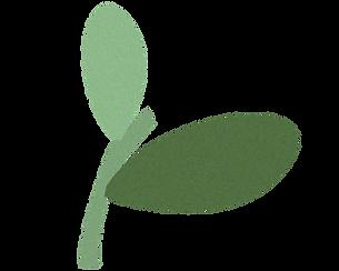 rostlinka.png