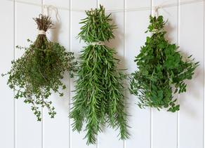 Vypěstujte si vlastní bylinkovou zahrádku