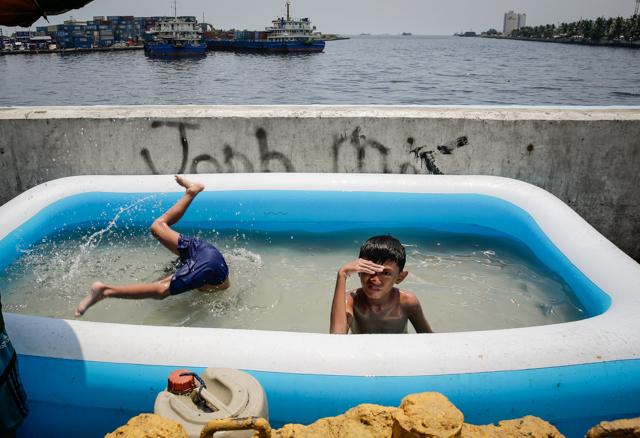 Tondo swimming