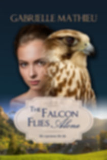 Falcon Flies Alone cover