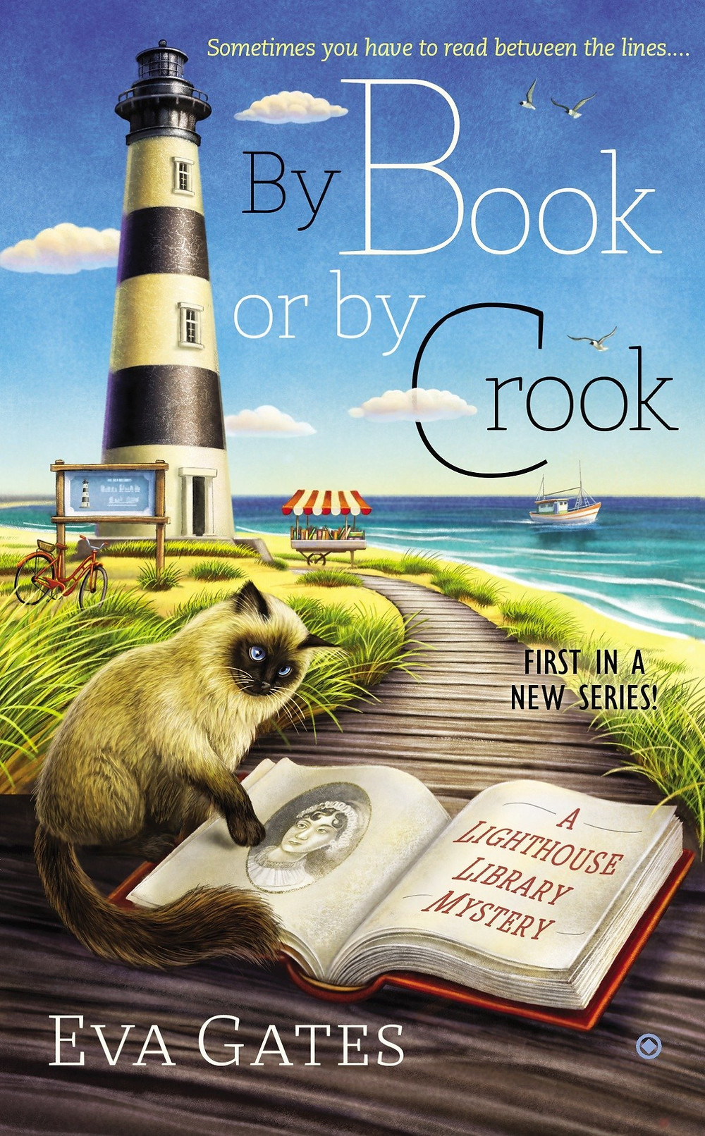 By Book and by Crook cover