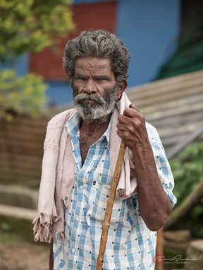 Man with Walking Stick