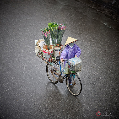 Hanoi Flower Bike